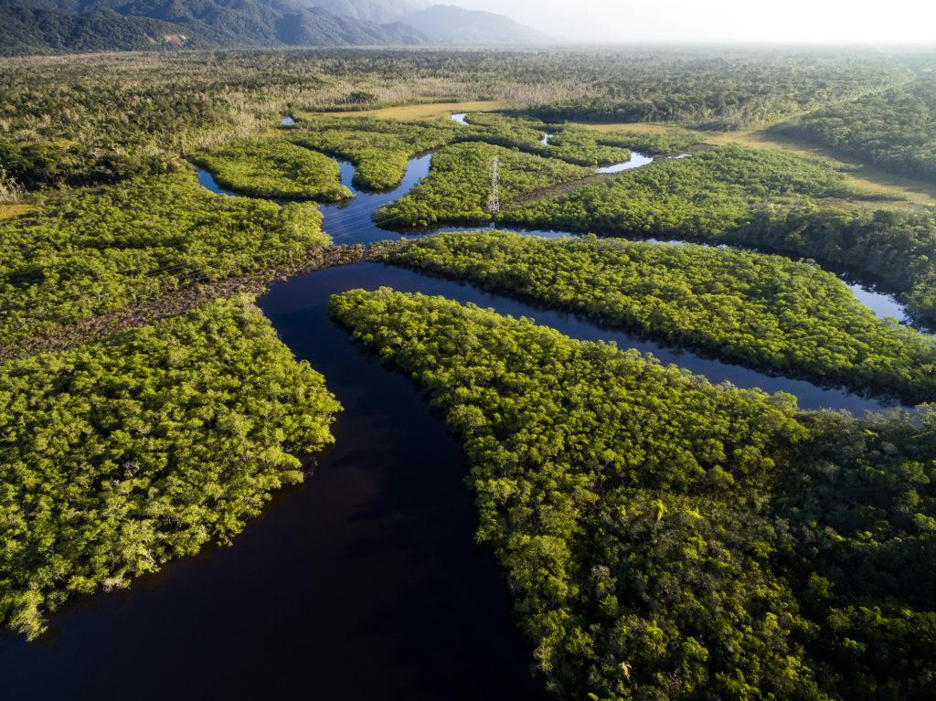 Luftaufnahme vom Amazonas Fluss