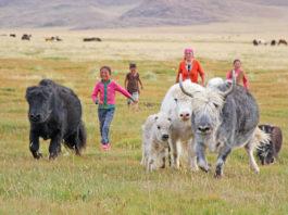 Nomadenkinder mit ihren Haustieren
